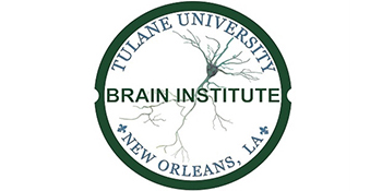 The Brain Institute