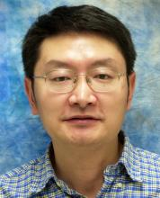 Hong Liu, PhD