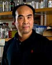 YiPing Chen, PhD